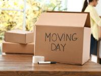Hoeks Verhuizingen Lommel inpakken voor verhuis
